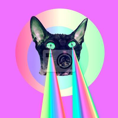 Módní kočka s duhové lasery z očí. Minimální koláž vtipné umění