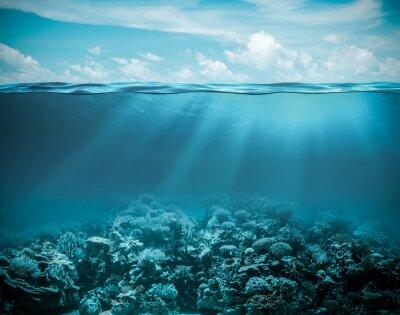 Obraz Moře nebo oceánu pod vodou hluboké přírodní pozadí