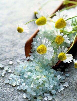 Obraz mořská sůl s bylinkami