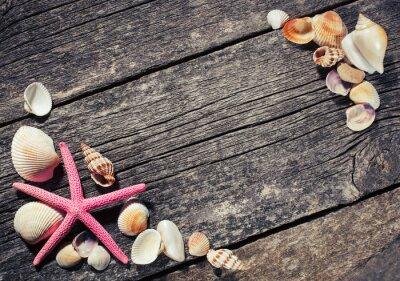 Obraz Mořské mušle na dřevěném pozadí