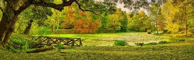 Obraz Mostní scéna na podzim - Lipník (Teketo) park, oblast Nikolovo, Bulharsko. Moderní olejomalba ilustrační umění