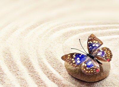 Obraz Motýl na písku