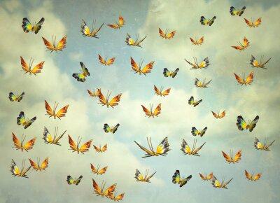 Obraz Motýli na obloze