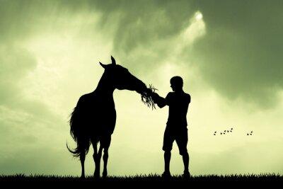 Obraz Muž a kůň při západu slunce