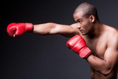 Obraz Muž boxu.