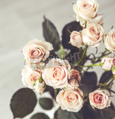 Obraz Nádherná kytice broskvoní růží v vintage váza na černém pozadí