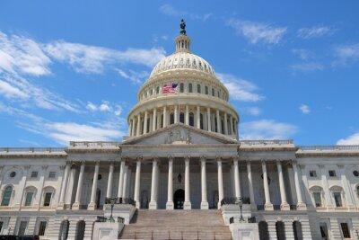 Obraz Národní Capitol, Washington DC