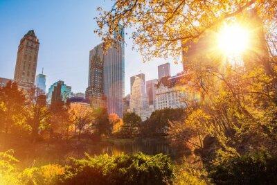 Obraz New York Central Park