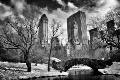 Obraz New York City - Central Park in winter -Gapstow bridge