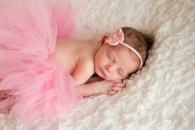 Obraz Novorozená holčička na sobě růžové Tutu