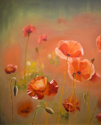 Obraz Olejomalba červené květy máku. Jarní květiny na pozadí přírody
