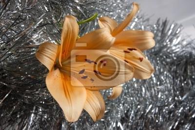 Obraz oranžová lilie na stříbře