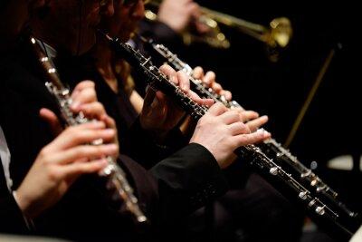 Obraz Orchestra di fiati