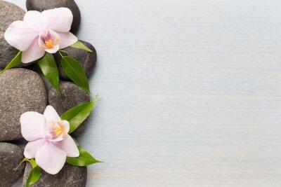Obraz Orchidej.