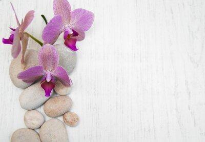 Obraz Orchideje a masážní kameny