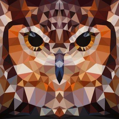 Obraz Owl head vector background geometrické ilustrace