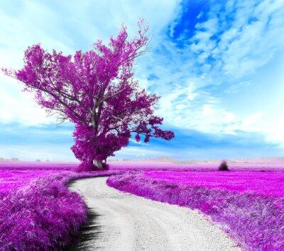 Obraz Paisaje surrealista. Arbol y camino entre los Campos