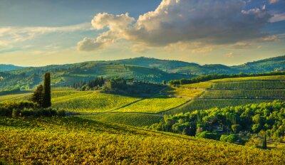 Obraz Panzano in Chianti vineyard and panorama at sunset. Tuscany, Italy