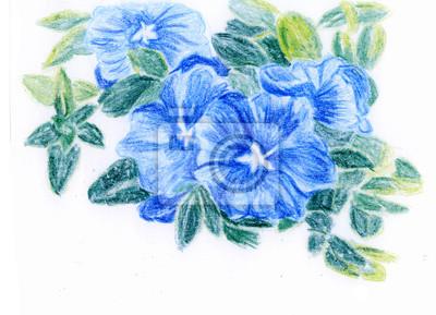 pastelka ilustrace, banda modrých květů