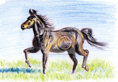 pastelka ilustrace, Koně na prérii