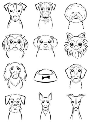 Pes Kresba Obrazy Na Stenu Obrazy Krmivo Pro Psy Maltstina