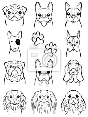 Pes Kresba Obrazy Na Stenu Obrazy Boston Terier Baset Pejsek