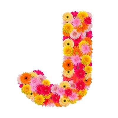 Obraz Písmeno J abeceda s gerbera na bílém pozadí