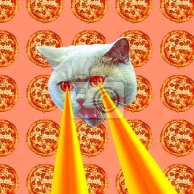 Pizza závislá kočka s lasery z očí. Zvířecí zábava koláž umění