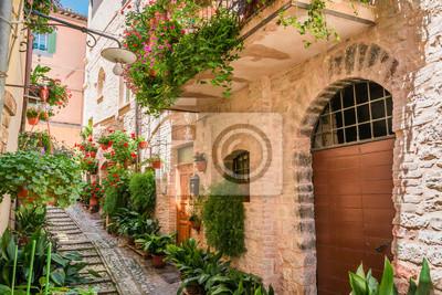 Plná květin ulici v malém městečku v Itálii, Umbrie