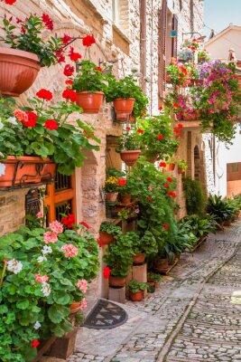 Plná květin verandy v malém městečku v Itálii, Umbrie