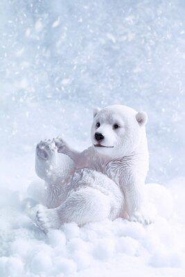 Obraz Polar Bear Obrázek