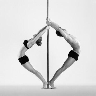 Obraz Pole tanec