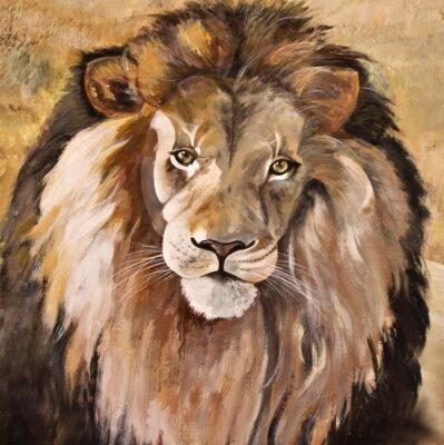 Obraz Portrét obrovské krásné mužského africký lev