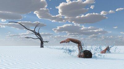 Obraz Pouštní písek plavec