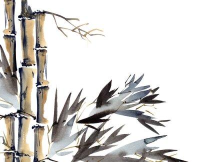 Obraz Pozadí s bambusem