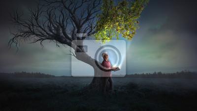 Obraz Přináší život stromu