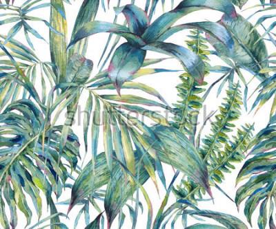 Obraz Přírodní listy exotické akvarel bezešvé vzor, zelené tropické listy, kapradí, hustá džungle, ručně malované botanické letní ilustrace na bílém pozadí  t