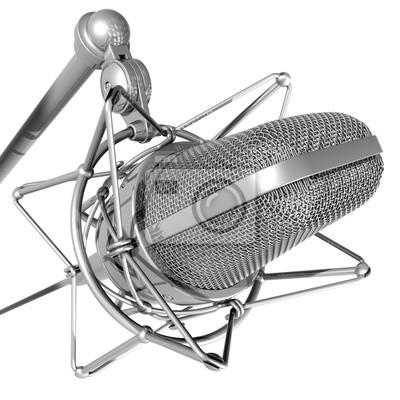 profesionální mikrofon