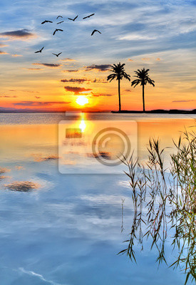 Obraz Puesta de sol en la isla tropický