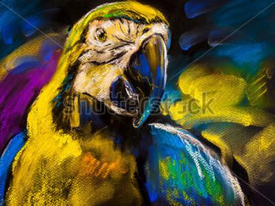 Obraz Původní pastelová malba na kartonu. Moderní malování krásného papouška