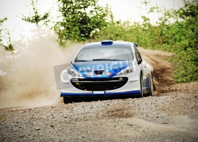 Obraz Rally car in action