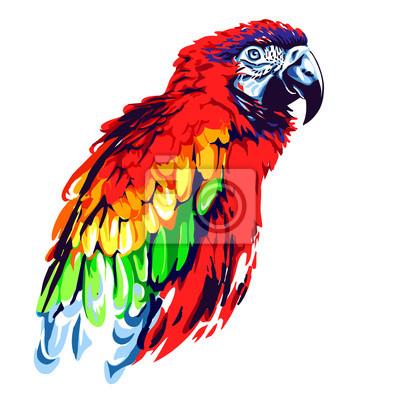 Obraz Red papoušek