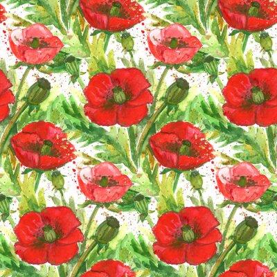 Obraz Red Poppies Akvarel Ilustrace