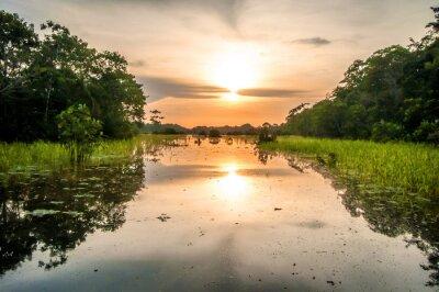Obraz Řeka v amazonského deštného pralesa za soumraku, Peru, Jižní Amerika