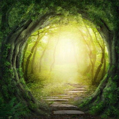 Obraz Road v temném lese