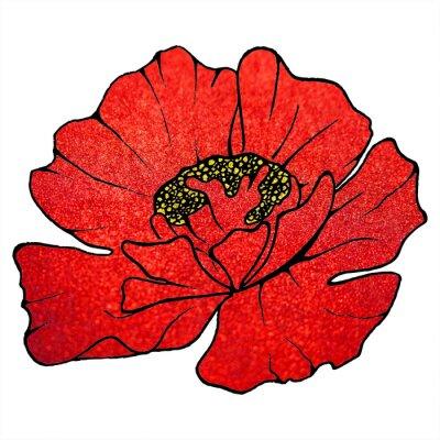 Obraz Rozmazané červená šarlatový třpytky květ máku na pozadí textury