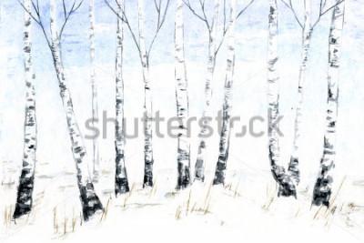 Obraz Ručně kreslená akvarelová zimní krajina. Lesní ilustrace, zimní stromy. Bříza