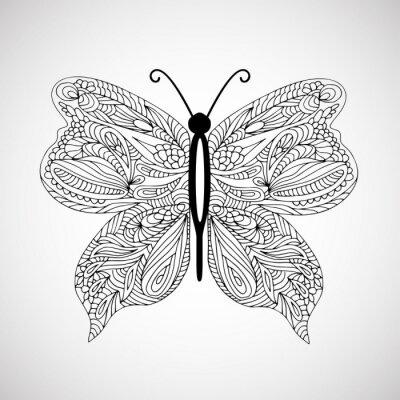 Obraz Ručně malovaná doodle motýl