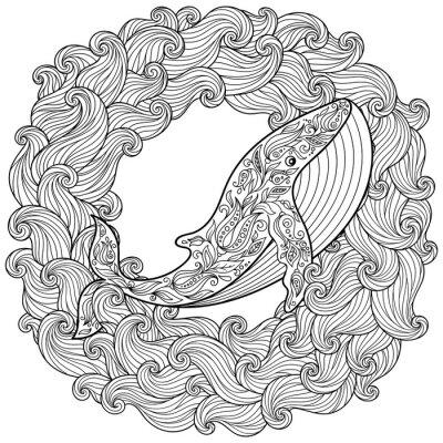 Obraz Ručně tažené velryba ve vlnách pro antistresová zbarvení stránky