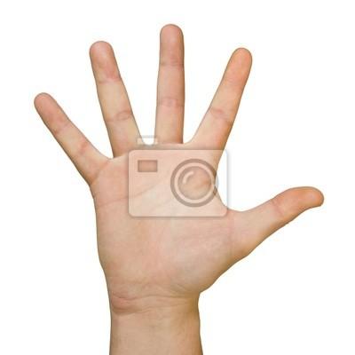 ruka (dlaň)